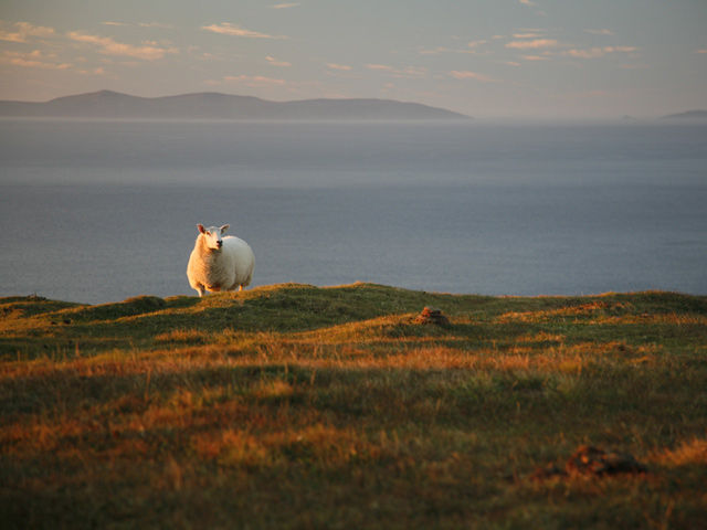 Irlande - Connemara - Cottage Clifden avec traversée maritime incluse