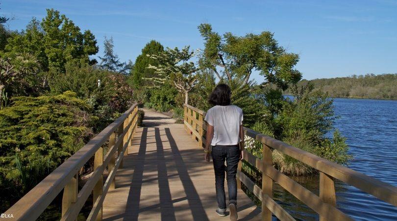 France - Atlantique Sud - Road Trip en Fourgon Aménagé : Les Landes