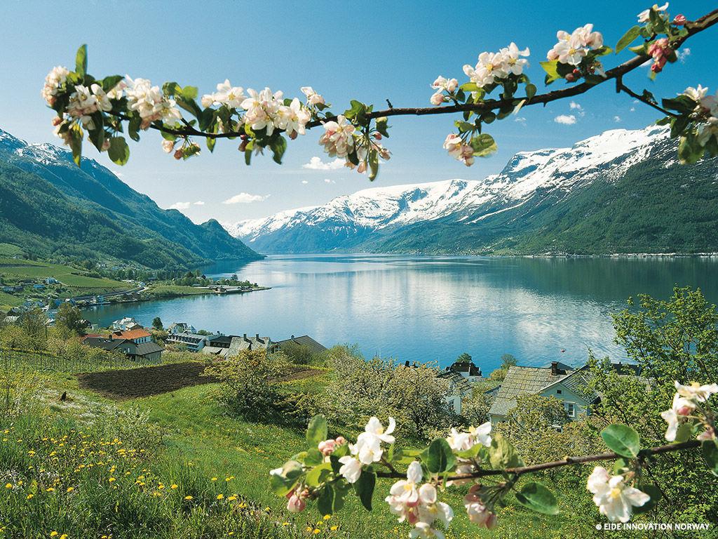 Circuit Norvège des Fjords - 1