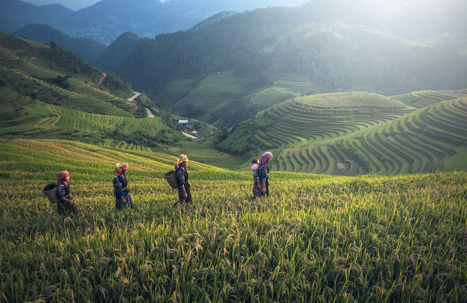 Les incontournables de Bali, 10 jours / 07 nuits, Départs garantis de 02 à 20 participants