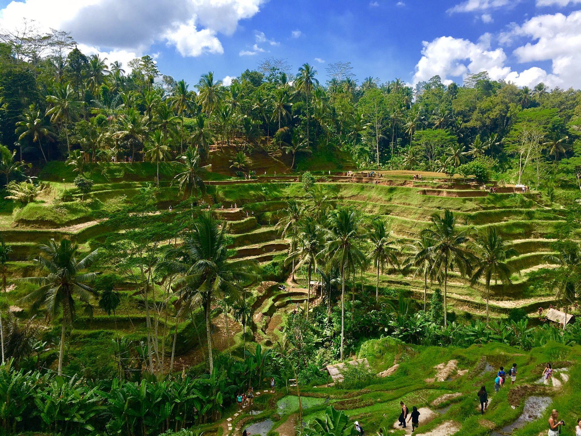 Les Incontournables de l'Indonésie, Combiné Java Bali, 13J 10N, départs garantis à partir de 02 participants - voyage  - sejour